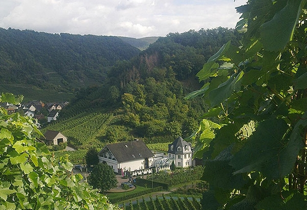 Weingut_Deutzerhof_Start